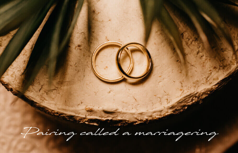 結婚指輪というペアリングのアイキャッチ
